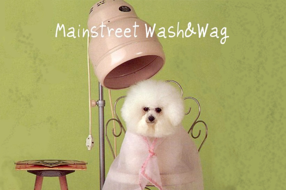 WHDA  0000 Mainstreet Wash Wag